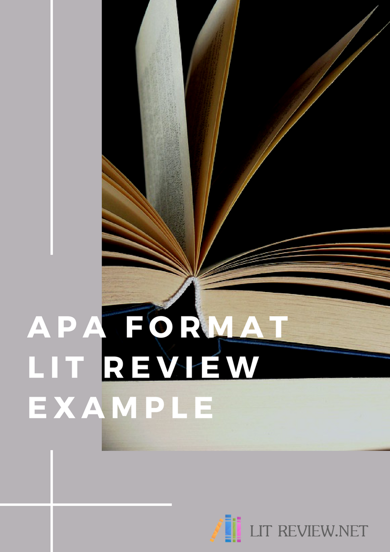apa format lit review example