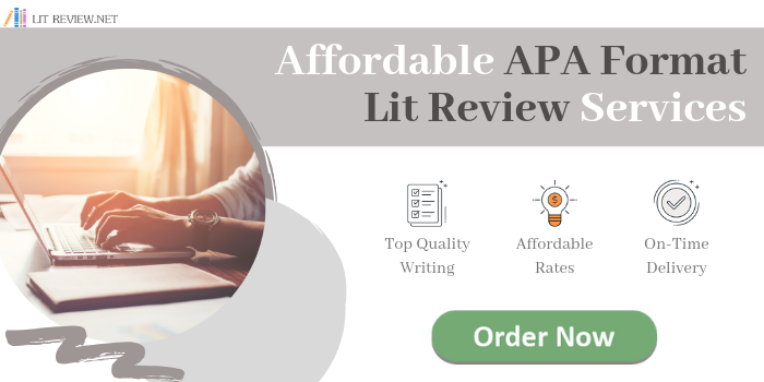 apa literature review services