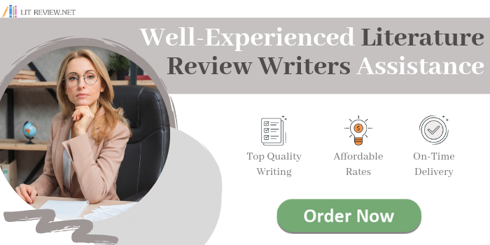 literature review writers assistance