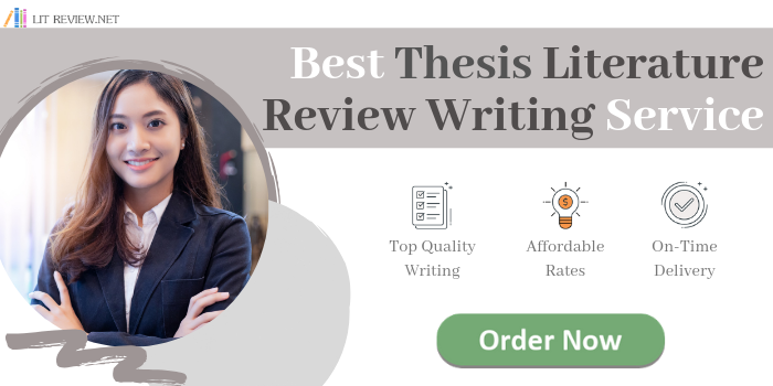 professional thesis literature review help
