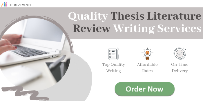 thesis literature review writing service