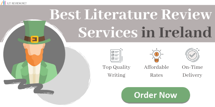 expert literature review service in ireland