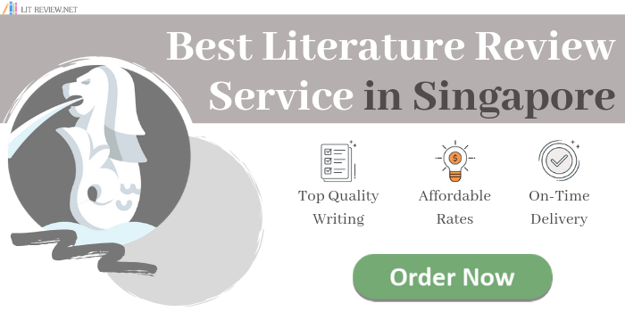 best literature review writing services in singapore
